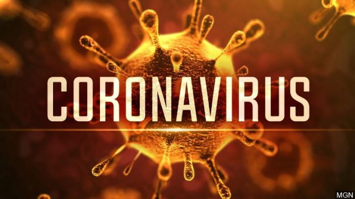 WHO considers 'airborne precautions' for staff after study shows coronavirus can survive in the air